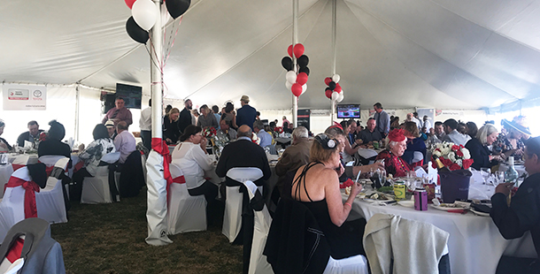 Dubbo City Toyota Gold Cup Race Day 2017